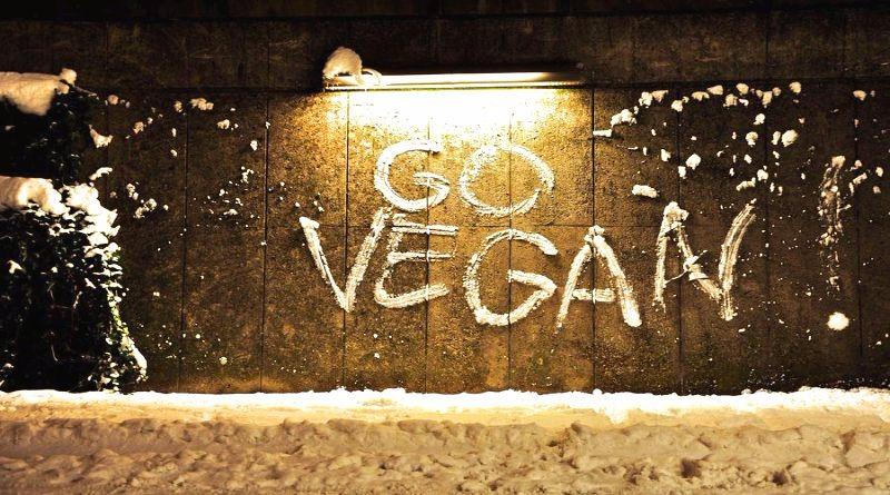 Conheça marcas brasileiras 100% veganas