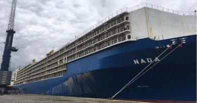 Navio com 27 mil bois vivos parte de Santos para Turquia