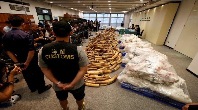 Proibido o comércio de marfim na China