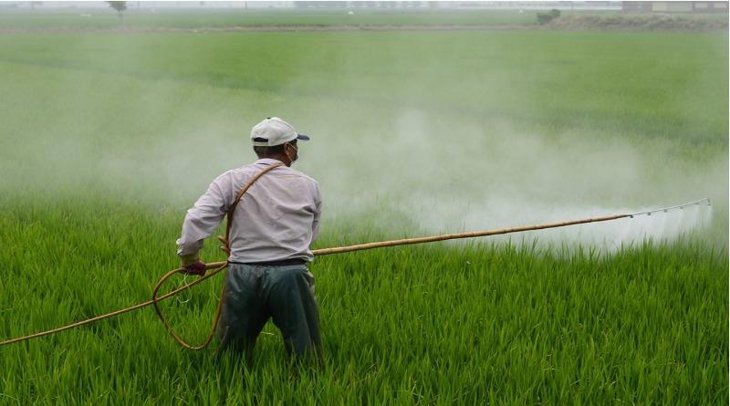Anvisa libera uso de agrotóxico que pode causar danos graves